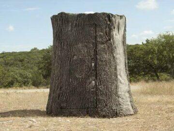 Дерево-сарай