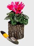 Горшок маленький с цветами